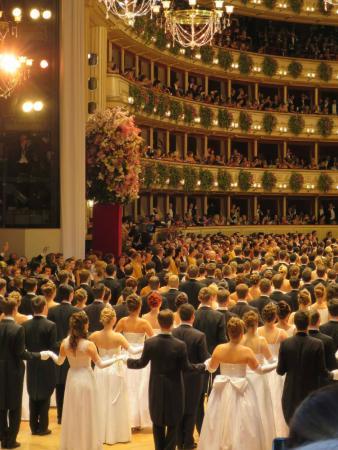 Tanzschule Svabek die Wiener Opernball Tanzschule