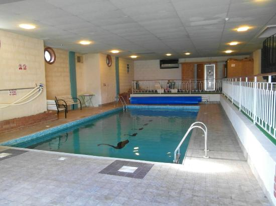 Cygnet Hotel: Good size indoor pool