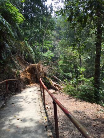 Jeriau Waterfall: Blocked pathway