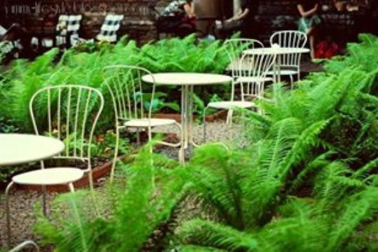 Dynia: Nasz ogród już czeka na Was