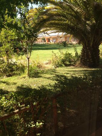 Termas de Quinamavida : Vista de la habitación a los jardines