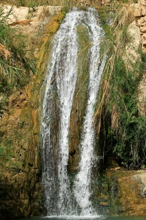 Dead Sea Region, Israel: Waterfall at Ein Gedi