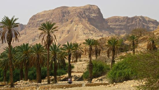 Dead Sea Region, Israel: Entrance