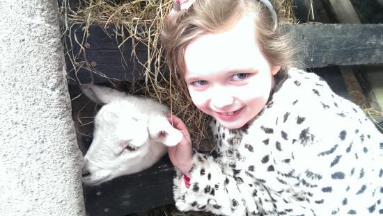 Clonfert Pet Farm: Kaitlin at Clonfert farm