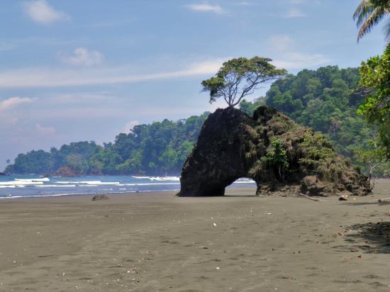 Drake Bay, Costa Rica: 47