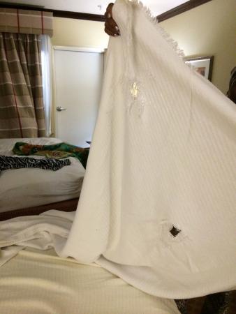 Country Inn & Suites By Carlson, Galveston Beach: Thin blankets