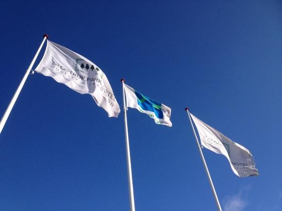 Glostrup Park Hotel: hotel flags