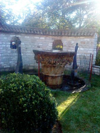 Salons Waerboom: Tuin