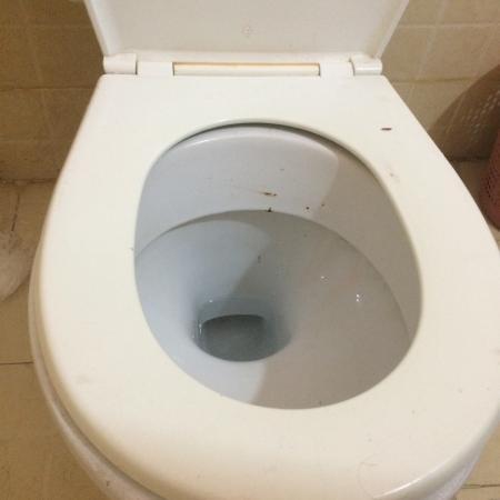 Riad Chennaoui: Toilette