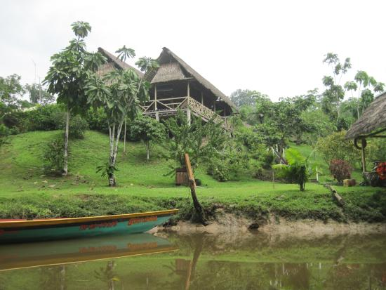 Yarina Eco Lodge: View of the lodge from the river.