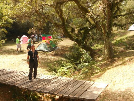Espaço para camping. Informações diretas sobre a cidade: facebook: Javali Do Herval