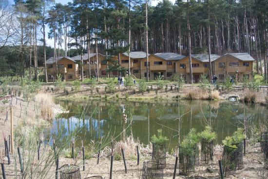 Center Parcs Woburn Forest Picture Of Center Parcs Woburn Forest Bedford Tripadvisor