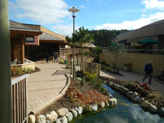 Path To Pool Picture Of Center Parcs Woburn Forest Bedford Tripadvisor
