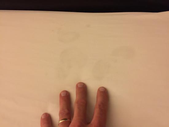 Country Inn & Suites by Radisson, Port Charlotte, FL: Dark stains on bed sheets at country Inn and suites Port Charlotte Florida March 2015