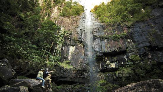 Pacific Coast Australia, أستراليا: Protestor Falls