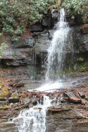 Cascade Falls : along the way