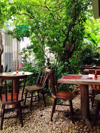 Restaurante Harmonia Da Terra
