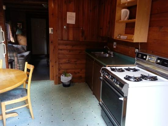 Park Gate Chalets: kitchenette - cabin 5