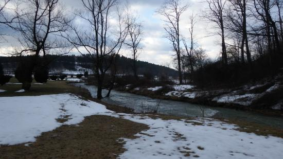 The Inn at Mountain Quest: Free flowing creek is beautiful and attracts deer and other wildlife.