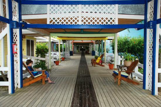Hotel Ejecutivo Las Palmas Beach 79 1 2 0 Updated 2018 Room Prices Specialty Reviews Roatan Honduras Bay Islands Tripadvisor