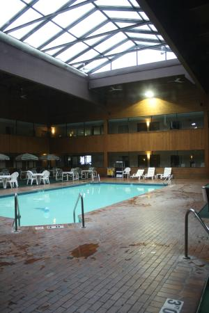 Woodfield Inn and Suites : Pool