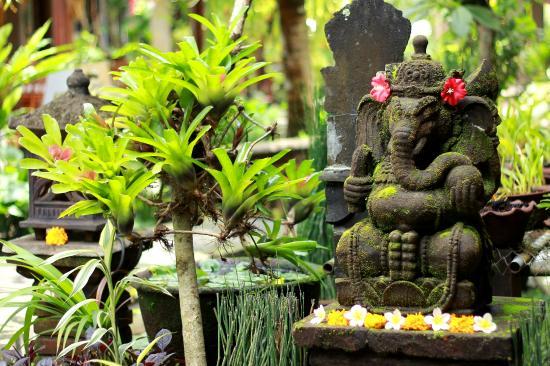 tempel der berührung preise dreckige unterwäsche