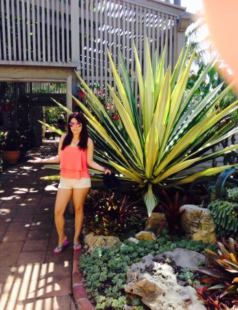 Sherman Library & Gardens: Fantastiko!