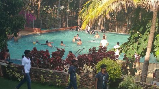 Pool Picture Of Urban Valley Bengaluru Tripadvisor
