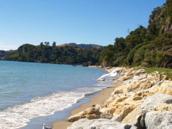 Pohara Beach TOP 10 Holiday Park, Hotels in Abel Tasman National Park
