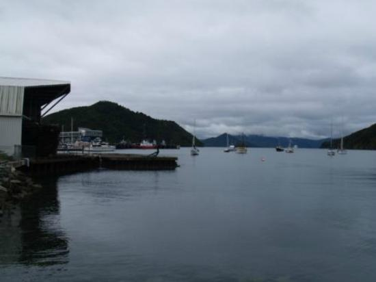 Picton Top 10 - MView from Picton Harbour