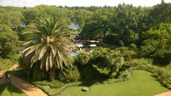 Riverside Sun: Lush green gardens