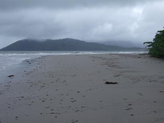 Daintree Rainforest Bungalows: Nearby Cow Bay