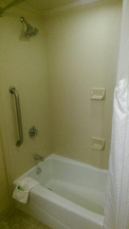 Holiday Inn Express & Suites Florence I-95 & I-20 Civic Ctr: Very nice