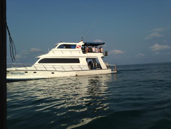Blue Guru Dive Centre : boat for divers