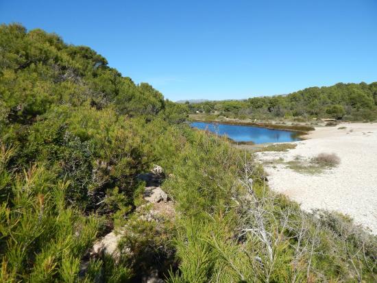 Camping Ametlla: près de la plage