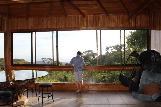 Hidden Canopy Treehouses Boutique Hotel Dining / living room & Rivendell Treehouse - Picture of Hidden Canopy Treehouses Boutique ...