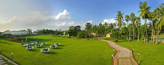 Mgm Beach Resorts Lawn