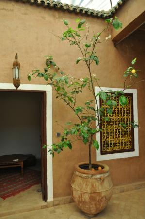 Dar Tougga : patio entre 4 chambres