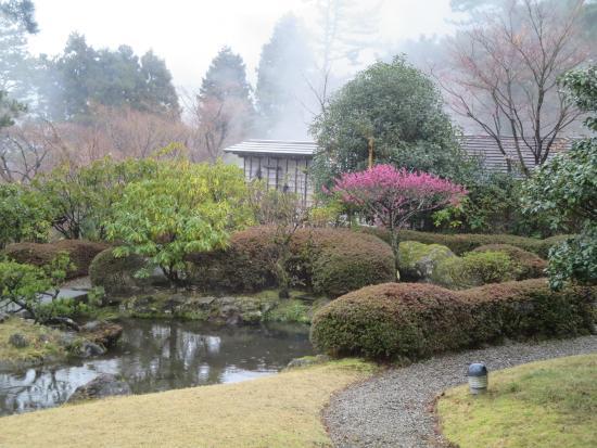 Hakonesaryo Chinzanso : 庭園