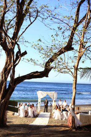 Barefoot Vacation Villas : wedding on the beach
