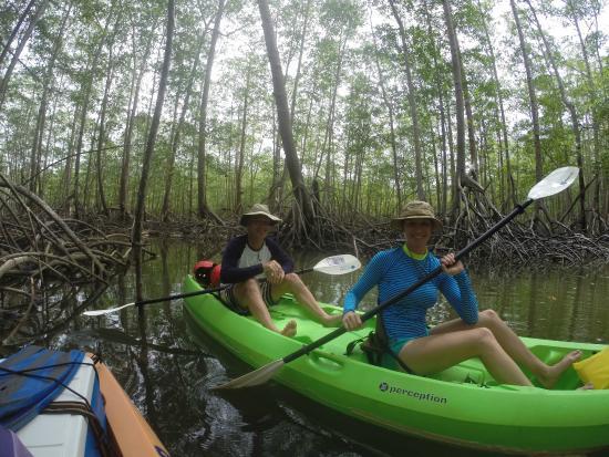 Uvita, Costa Rica: Mangrove Kayak - photo taken by Victor