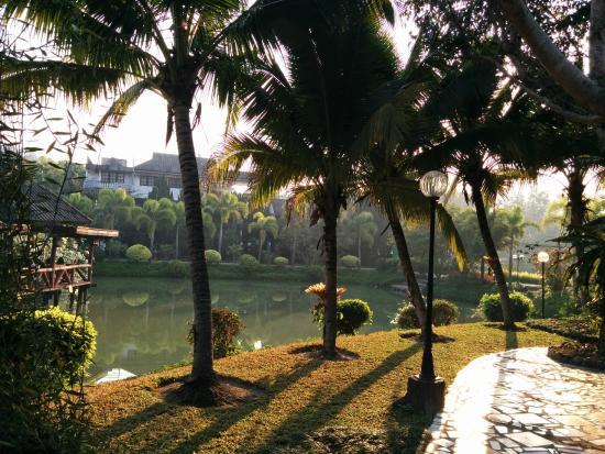 Rim Doi Resort : The pond