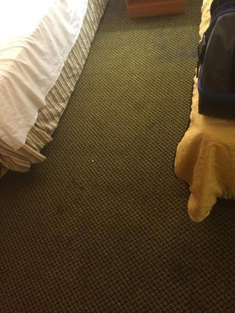 Days Inn & Suites Antioch : Disgusting