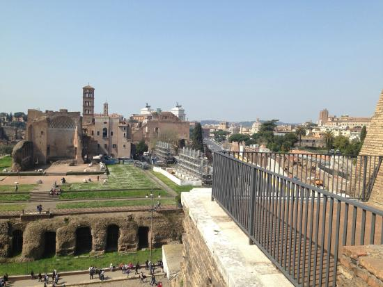 Vatican Tour Company : Our Colosseum tour took us to 3rd tier, which is closed off to public. This is Forum view.