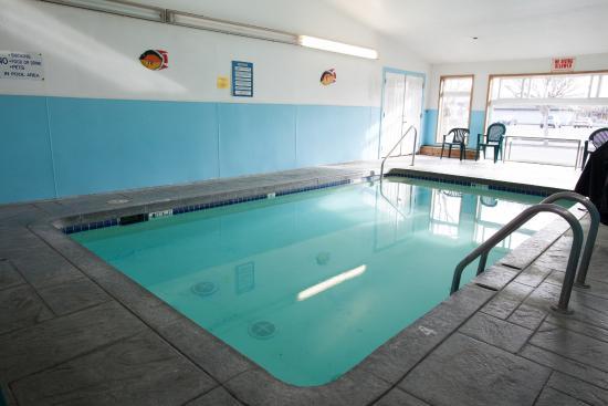 City Center Motel: Indoor heated pool