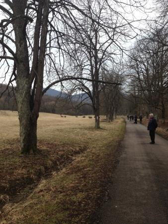 Paradfurdo, Hungría: National Park walk distance from the hotel