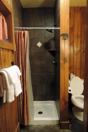 Finger Lakes Lodging: very nice shower