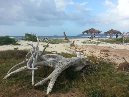 The Islander's Inn: Strand