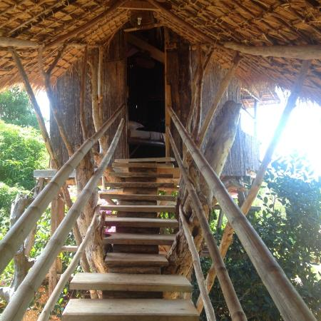 Tree Top Bungalows: getting there at night can be tricky