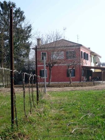 Azienda Vitivinicola Davide Bastianello